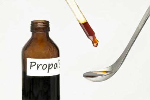 Как правильно пить настойку прополиса на спирту для укрепления иммунитета