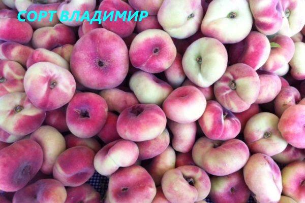 Инжирный персик - полезные свойства плоского фрукта для здоровья