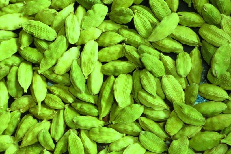 Кардамон - полезные свойства плода растения