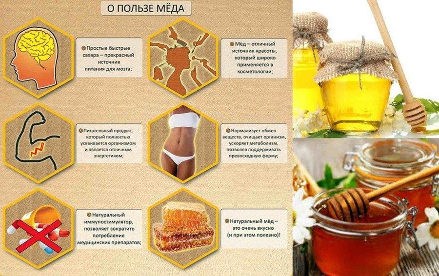 Вода с медом - польза, правильное приготовление полезного напитка