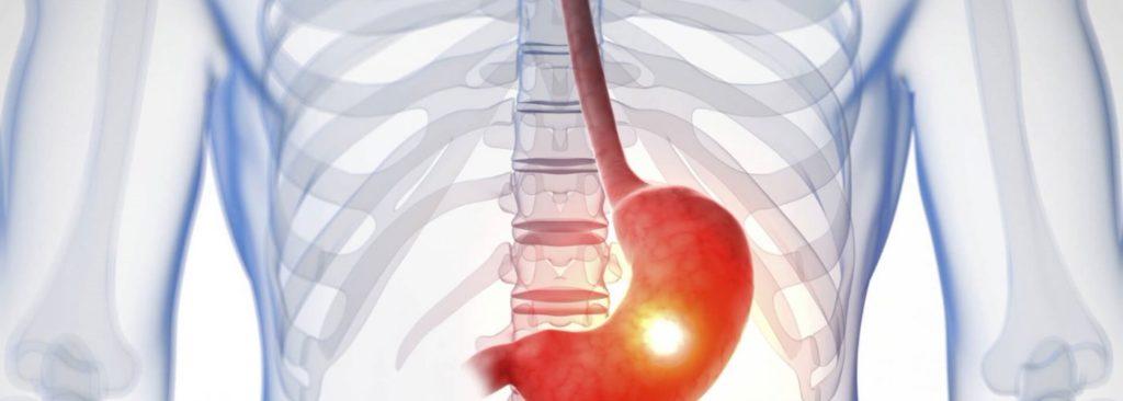 Виноград изабелла - состав и польза здоровья для человека