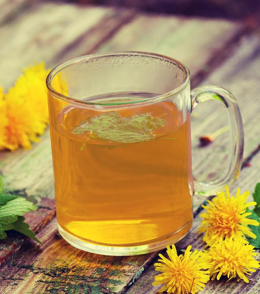 Польза чая из одуванчика для здоровья