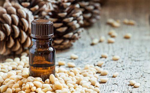 Применение кедровых орешков в народной медицине