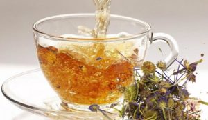 Синеголовник - описание лекарственного растения и способы применения