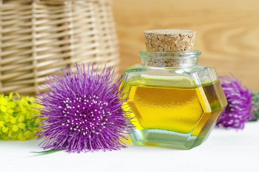 Лопух для волос: польза и рецепты народной медицины