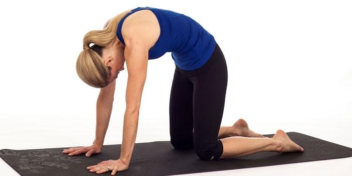 Упражнения при грыже позвоночника: правила проведения и комплексы тренировок в период ремиссии и обострения, после удаления