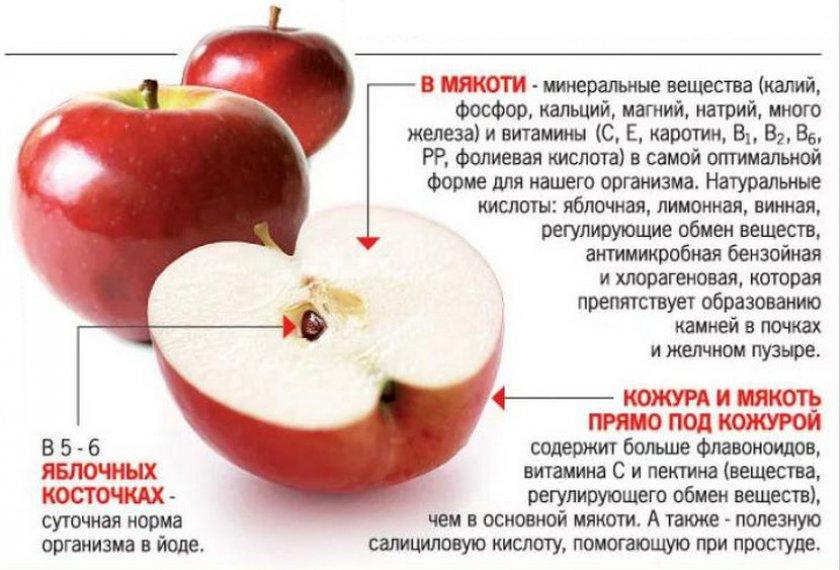 Моченые яблоки польза и вред