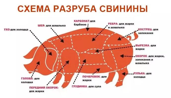 Какую часть свинины лучше брать для шашлыка