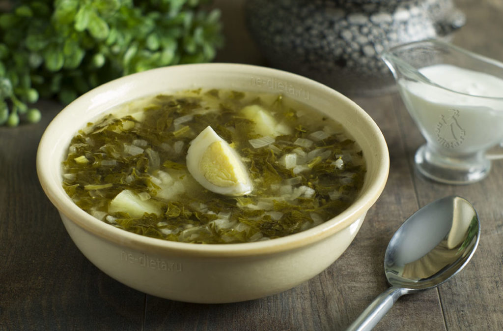 Холодный суп из щавеля с огурцами и яйцами: рецепты