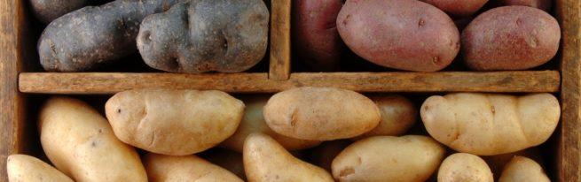 Жареный картофель - простые рецепты приготовления на сковороде